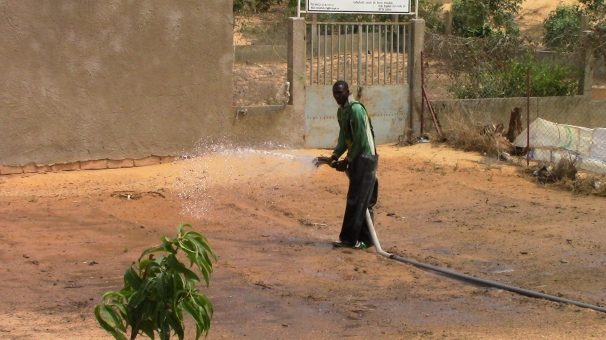 Master Farmer Serigne Abdou Sarr watering our first demonstration bed together
